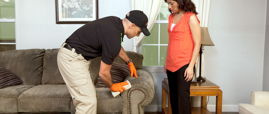The Dalles, OR carpet upholstery cleaning